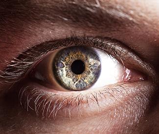Bild: Auge